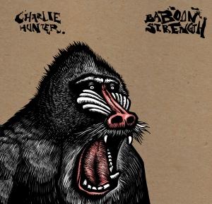 ch-baboon-cvr-hires